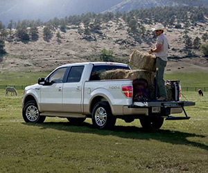 2015 Ford F-150 Cold Lake