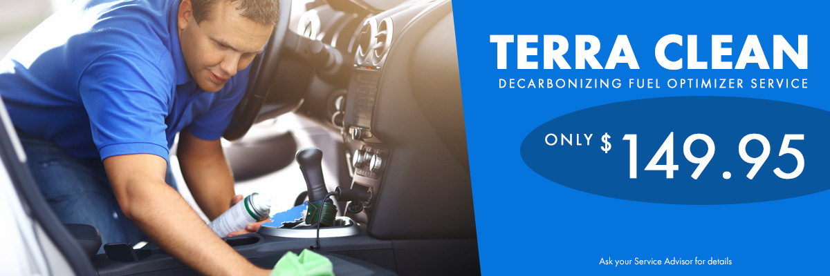 TerraClean Service Special