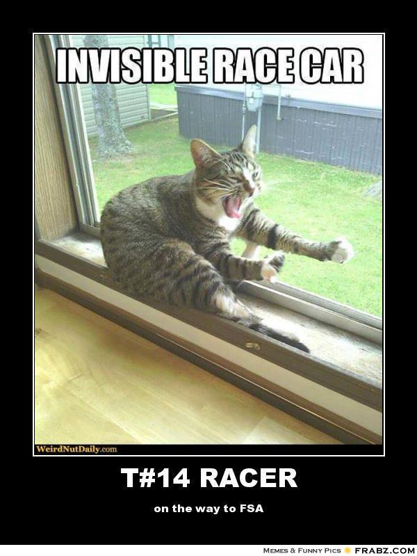 Invisible Racecar Cat